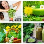 smoothie_rezepte_collage1_ganzheitliche_gesundheit_24